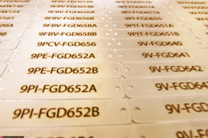 Engraved Stainless Data Plates
